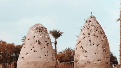 Photo of أبراج حمام -تراث شعبي- من القرية الفرعونية مصر ٢٩ يناير ٢٠٢٠